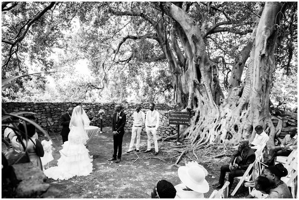 White Wedding Stomped_0131.jpg