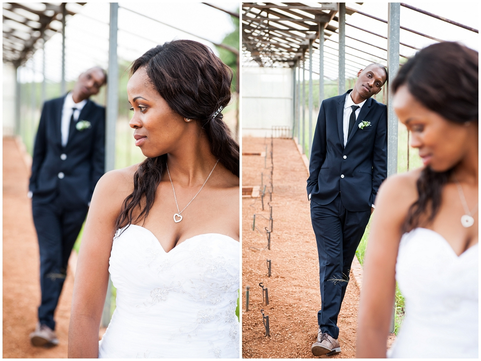 White Wedding Stomped_0176.jpg