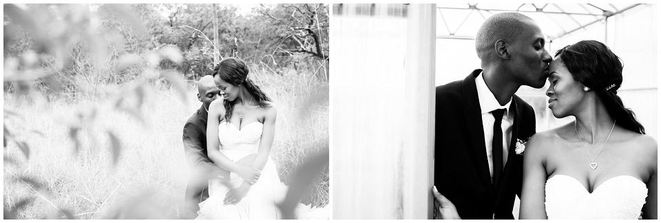 White Wedding Stomped_0187.jpg